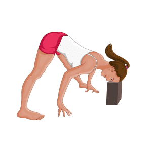yoga poses  the fitness tribe