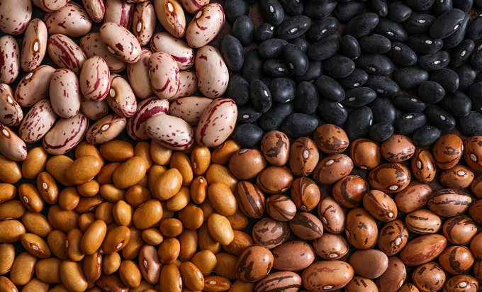 Four Kinds Of Beans