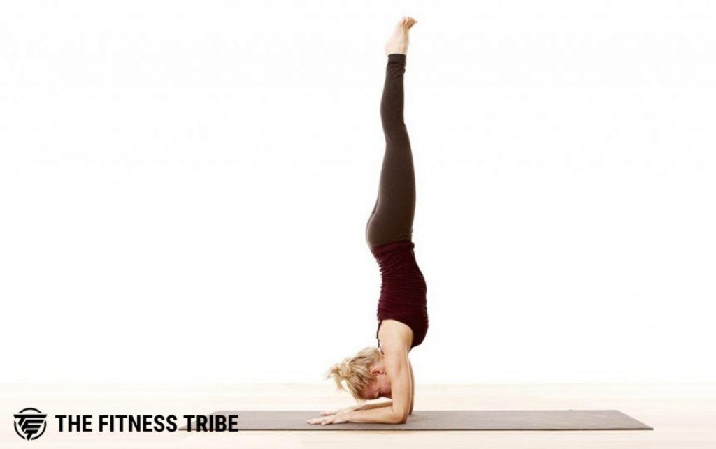 Forearm Balance (Pincha Mayurasana)