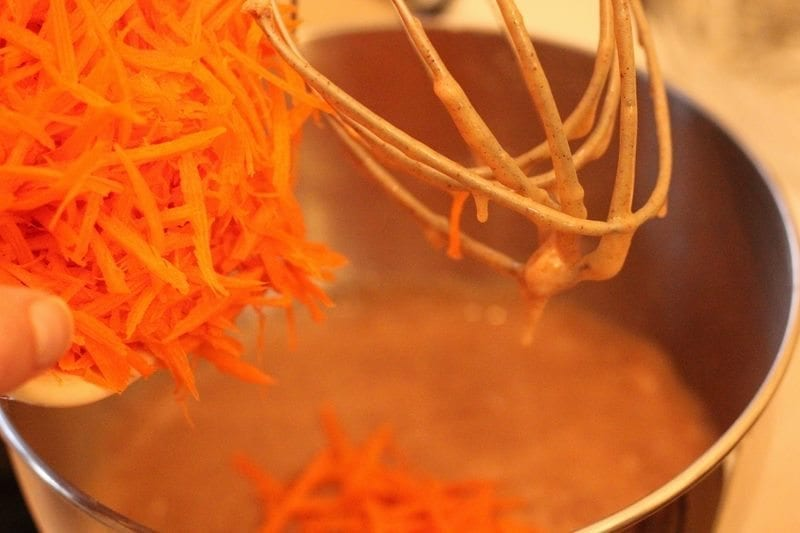 Adding Carrot In A Mixture