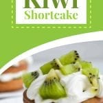 two layered shortcake with kiwi slices on top