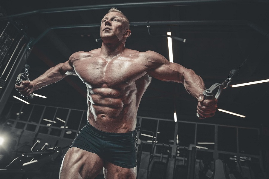 Best Workout For Pecs: The Complete Guide